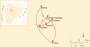 the-incas-crossing