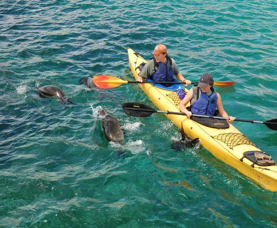 Galapagos Multisport adventure