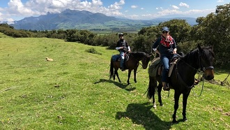 horseback riding ecuador tours