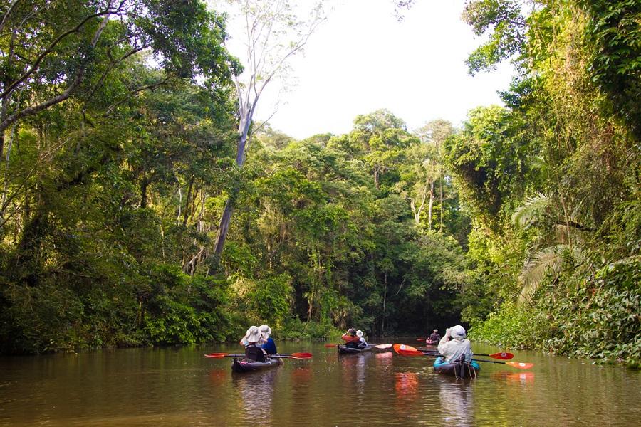 Ecuadorian Amazon Basin