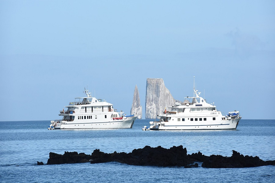 Right Galapagos Cruise