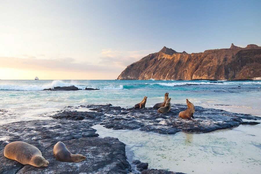 Guide to Galapagos Island-Hopping Tour