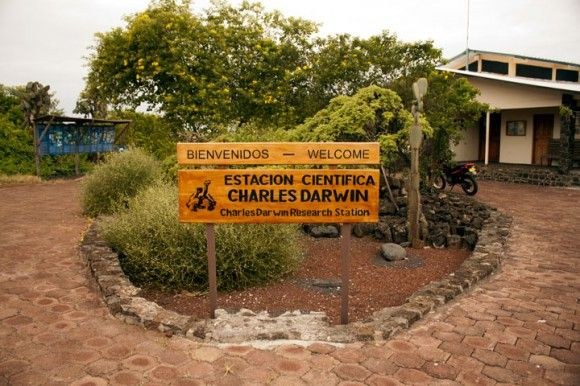 charles darwin research station.